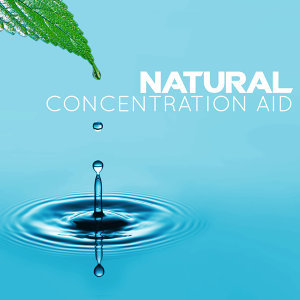 Natural Concentration 歌手頭像