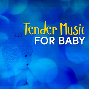 Tender Music for Baby 歌手頭像