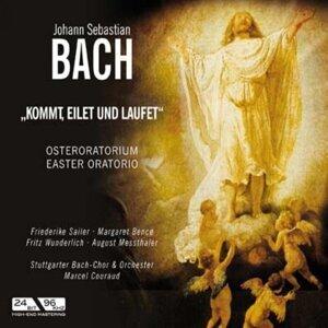 Stuttgarter Bach-Chor & Orchester 歌手頭像