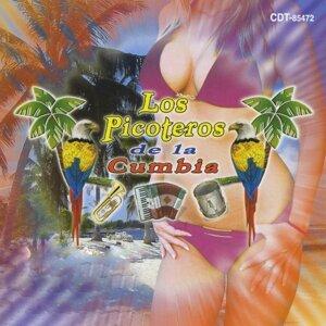 Los Picoteros de la Cumbia, Alberto Pedraza 歌手頭像