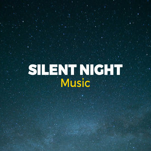 Silent Night Music 歌手頭像