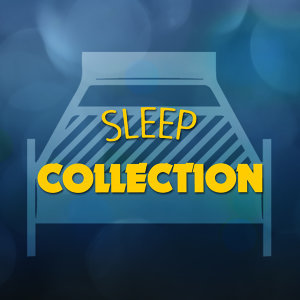 Sleep Collection 歌手頭像