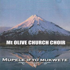 Mt Olive Church Choir 歌手頭像