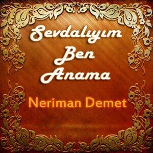 Neriman Demet 歌手頭像