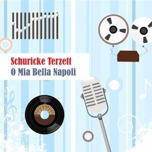 Schuricke Terzett 歌手頭像