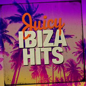 Juicy Ibiza Hits 歌手頭像