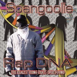 Spangoolie 歌手頭像
