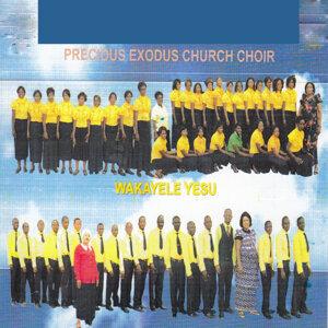 Precious Exodus Church Choir 歌手頭像