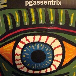 Pgassentrix 歌手頭像