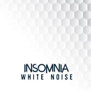 Insomnia White Noise 歌手頭像