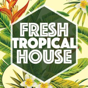 Fresh Tropical House 歌手頭像