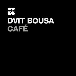 Dvit Bousa 歌手頭像