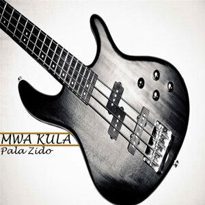 Pala Zido 歌手頭像