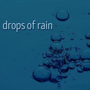 Drops of Rain 歌手頭像