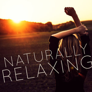 Natural Relaxation 歌手頭像