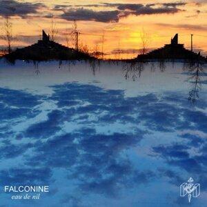 Falconine 歌手頭像