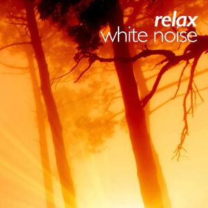 Relax White Noise 歌手頭像