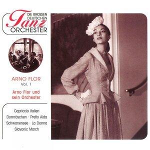 Arno Flor & sein Orchester 歌手頭像