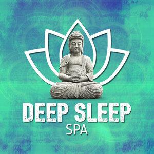 Deep Sleep Spa 歌手頭像