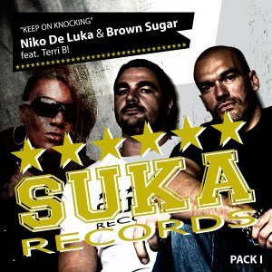 Niko De Luka & Brown Sugar Feat Terri .B! 歌手頭像