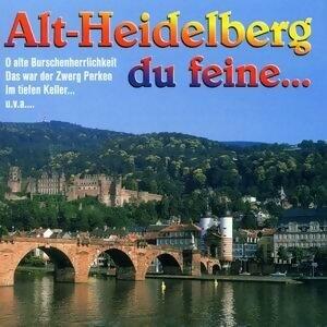 Alt-Heidelberg, du feine... 歌手頭像