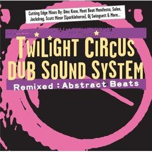 Twilight Circus Dub Sound System 歌手頭像