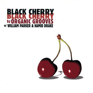 Organic Grooves feat. William Parker & Hamid Drake 歌手頭像