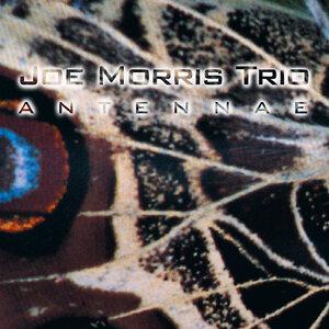 Joe Morris Trio