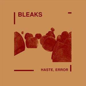Bleaks 歌手頭像