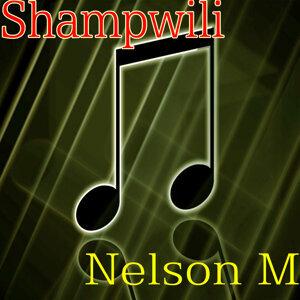 Nelson M 歌手頭像