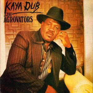 The Agrovators 歌手頭像