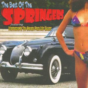 The Springers 歌手頭像