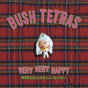 Bush Tetras 歌手頭像