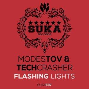 Modestov & Techcrasher 歌手頭像