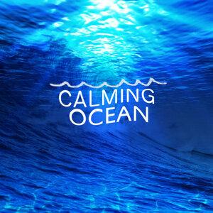 Calming Ocean 歌手頭像