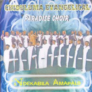 Chibuluma Evangelical Paradise Choir 歌手頭像