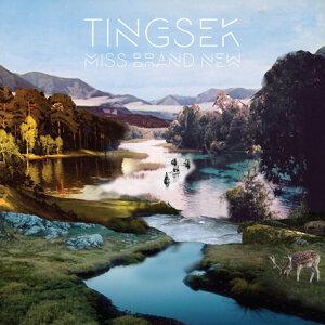Tingsek 歌手頭像