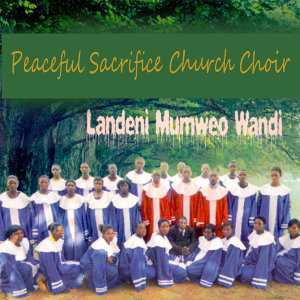 Peaceful Sacrifice Church Choir 歌手頭像