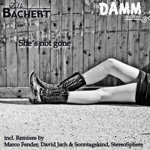 Falk Bachert 歌手頭像