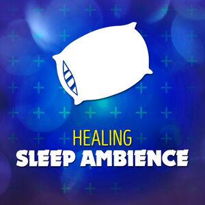 Healing Sleep Ambience 歌手頭像