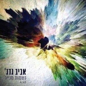 Aviv Guedj 歌手頭像
