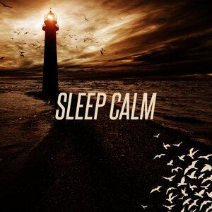 Sleep Calm 歌手頭像