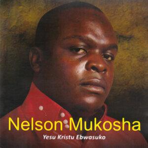 Nelson Mukosha 歌手頭像