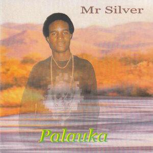 Mr Silver 歌手頭像