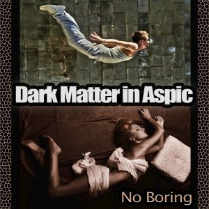 Dark Matter in Aspic 歌手頭像