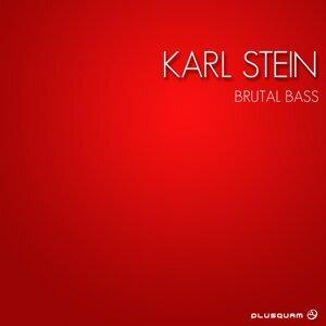 Karl Stein 歌手頭像
