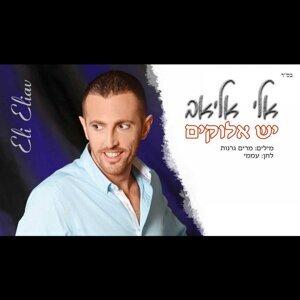 Eli Eliav 歌手頭像