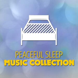 Peaceful Sleep Music 歌手頭像