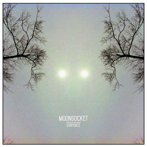 Moonsocket 歌手頭像