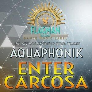Aquaphonik 歌手頭像